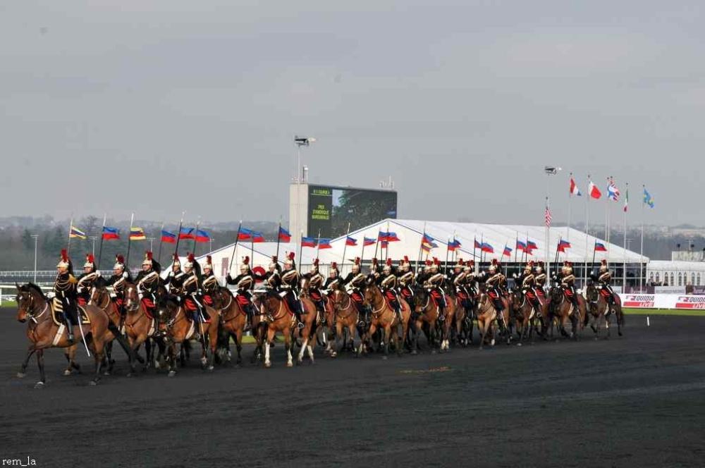 cheval,course,amerique,trot,garde,republicain