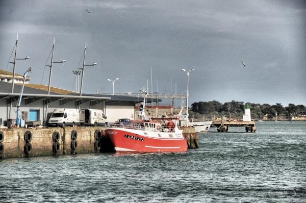 Le port de Lorient   8