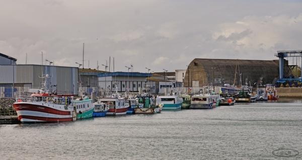 Le port de Lorient   9