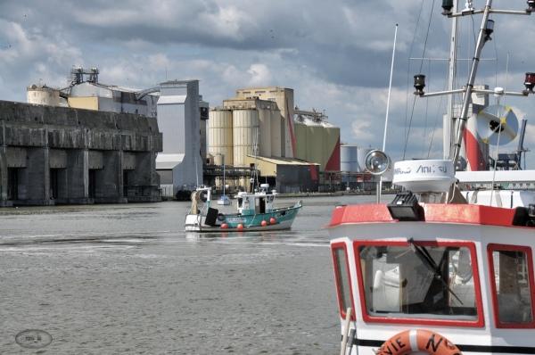 Le port de St Nazaire   12