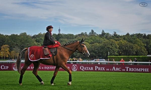 Quatar Prix de l'Arc de Triomphe à Longchamp 19