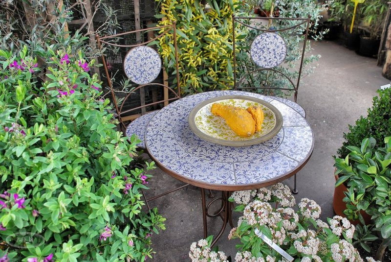 table,chaise,jardin