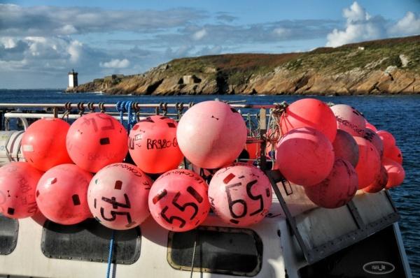 Retour de pêche au Conquet en novembre 5