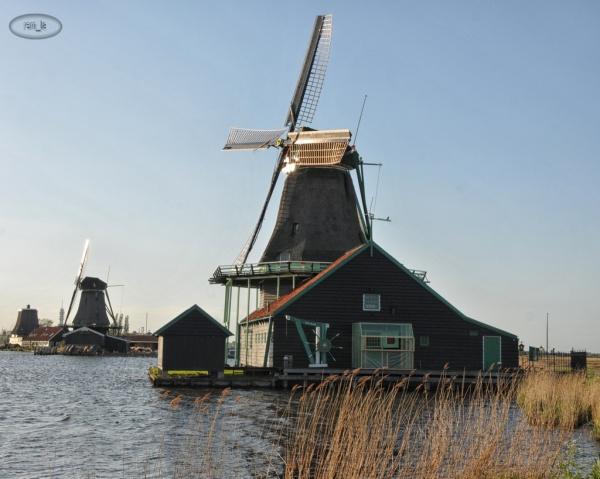 Zaanse Schans et ses moulins   5