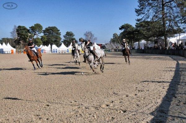 Paddock Polo à Fontainebleau   2