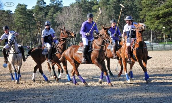 Paddock Polo à Fontainebleau   4