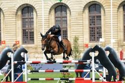 cheval,concours,chantilly,hippique