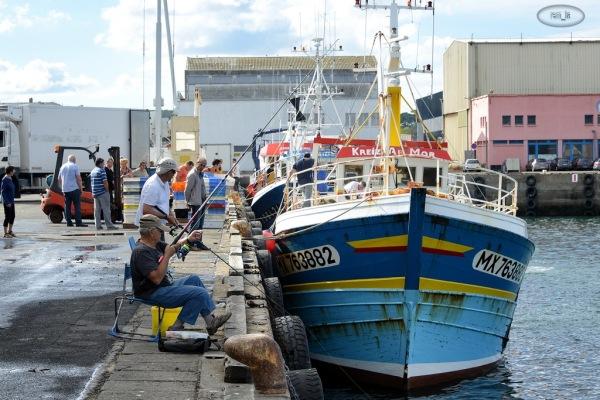 Retour de pêche à Douarnenez 8
