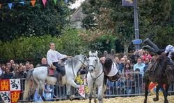 fête,médiéval,brie comte robert,cheval