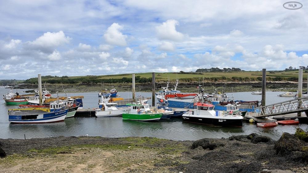 port,pêche,goemon,bateau