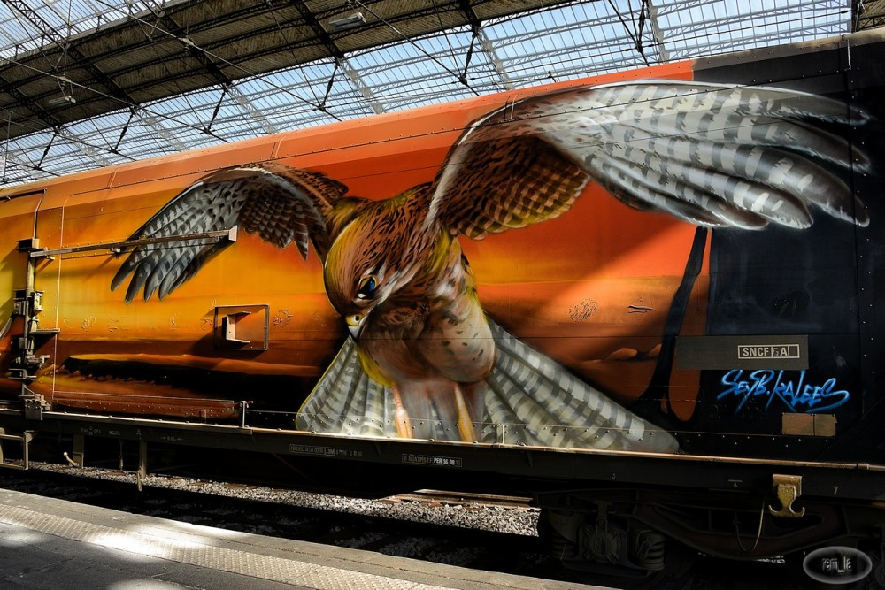 train,austerlitz,tag,art