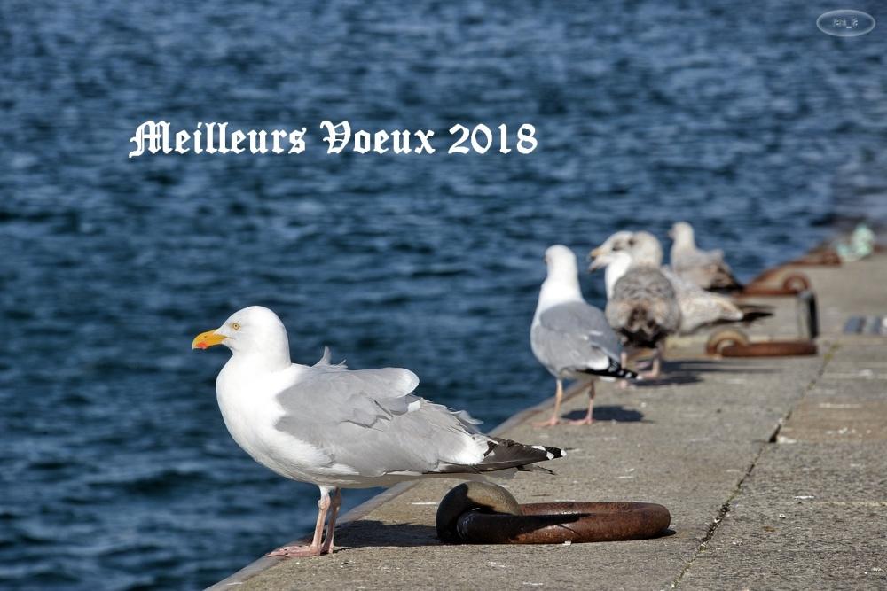 2018,voeux