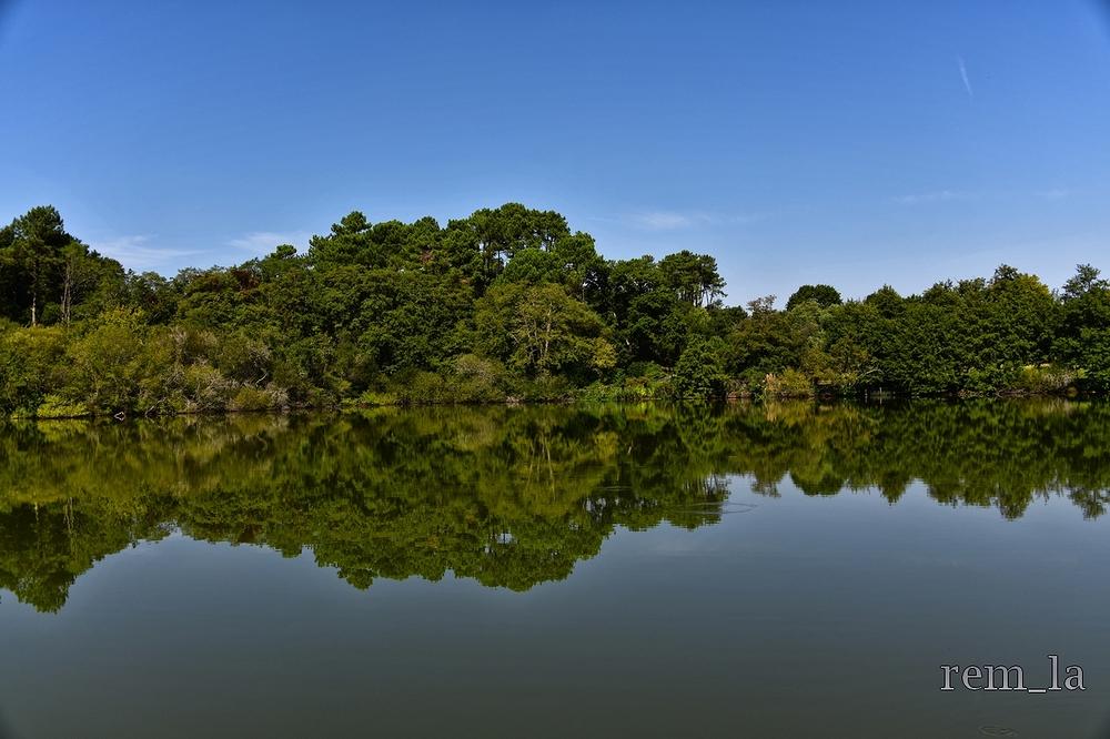 seignosse,lac,paysage,nature