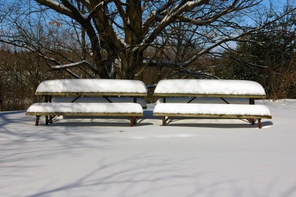 Snow Benches