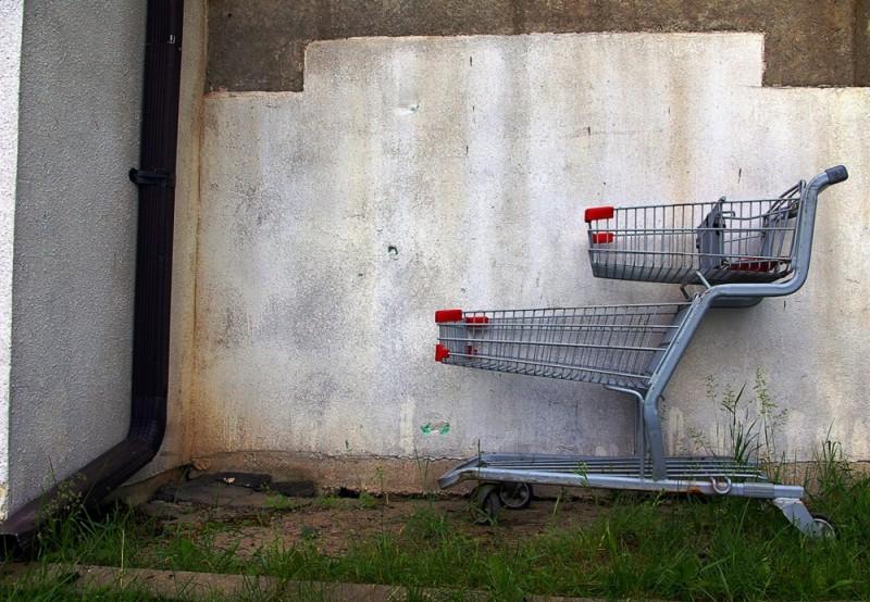 Shopping Cart-19