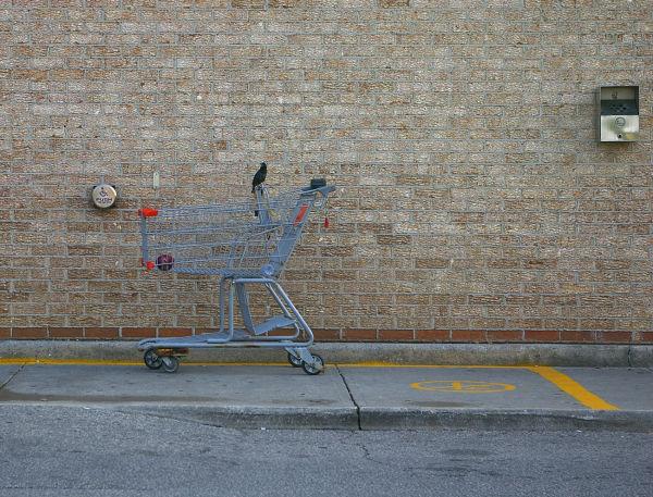 Shopping Cart-23