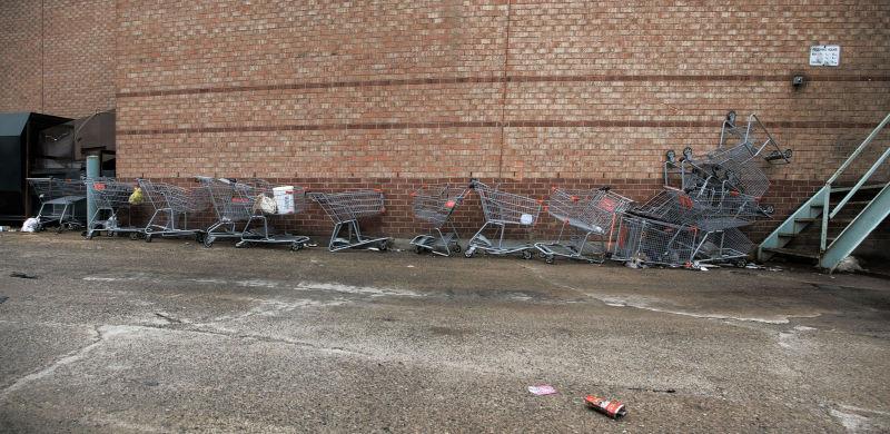SHopping Cart- 49