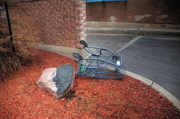 Shopping Cart- 61