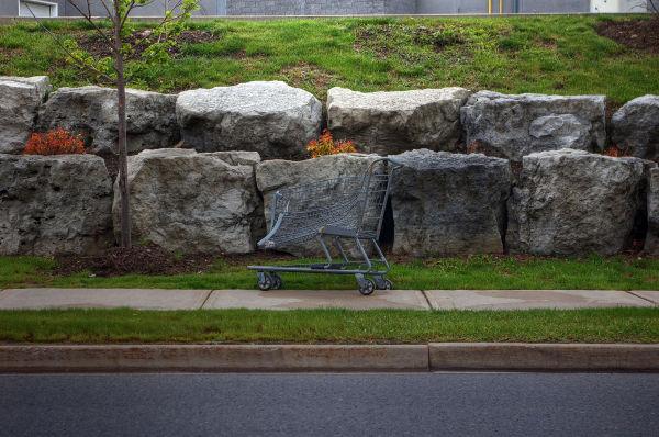 Shopping Cart- 62