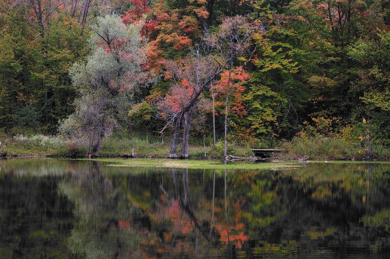 Soft Reflection