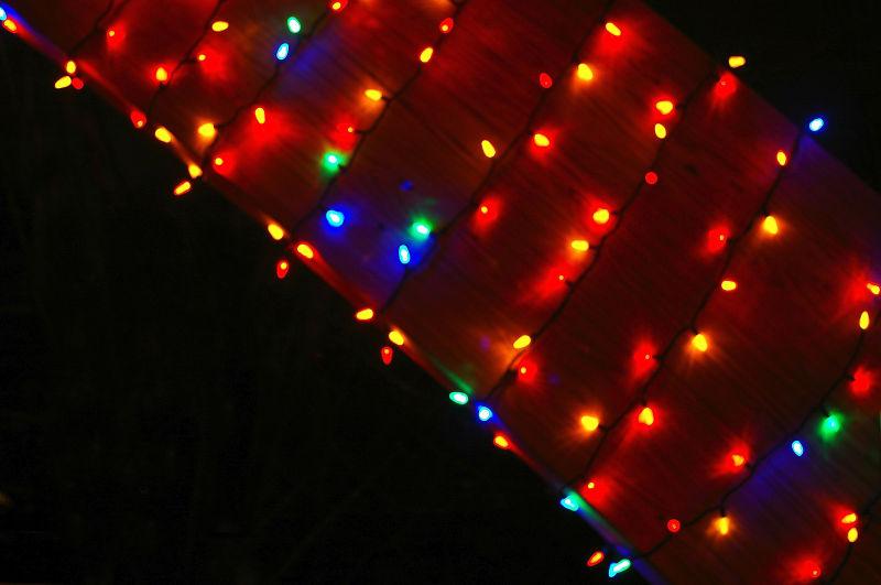Christmas Week - 5
