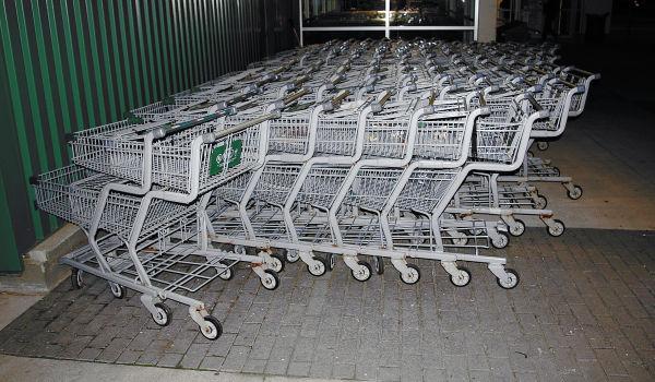 Shopping Cart- 89