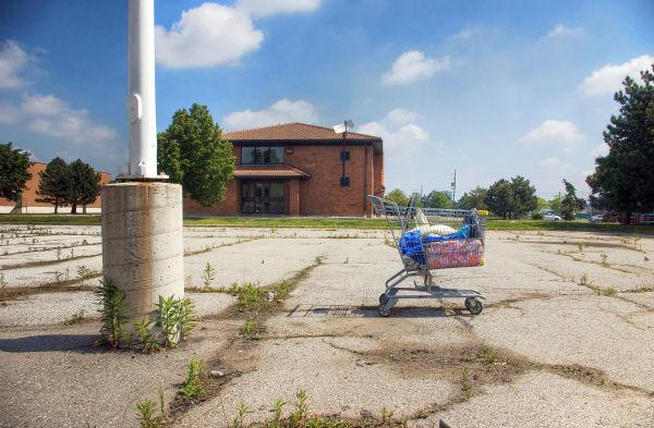 Shopping Cart- 111
