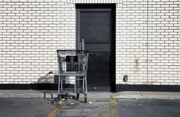 Shopping Cart- 113