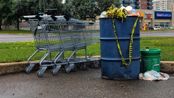 Shopping Cart- 115