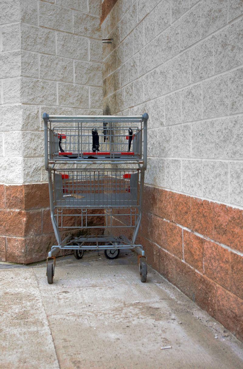 Shopping Cart - 122