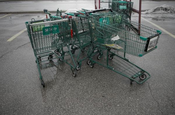 Shopping Cart - 132