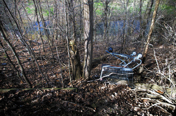Shopping Cart - 134
