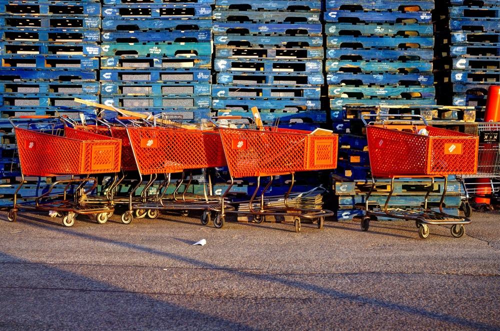 Shopping Cart - 149