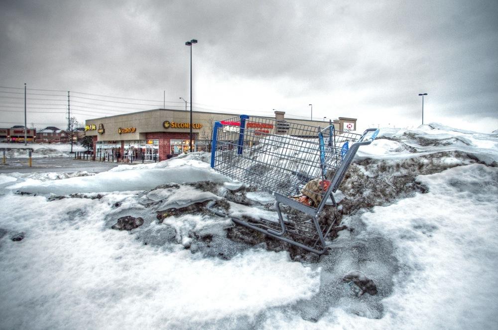 Shopping Cart - 156