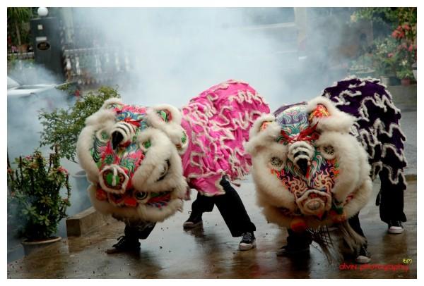 Lion Dance...