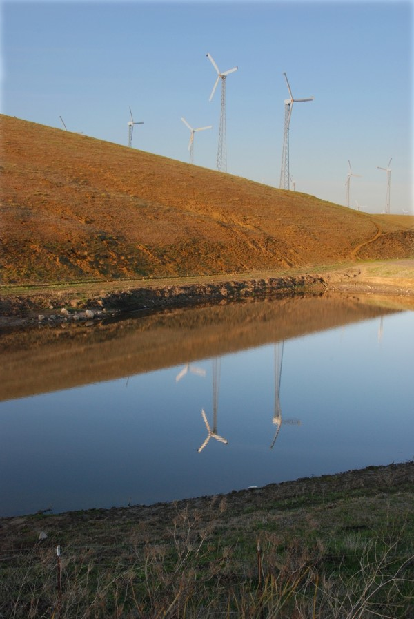 Altamont Windmills reflection