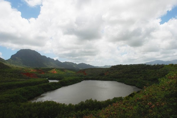 Small lake and Mountains, Kauai