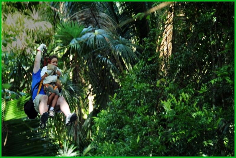 Zip line over the jungle's canopy
