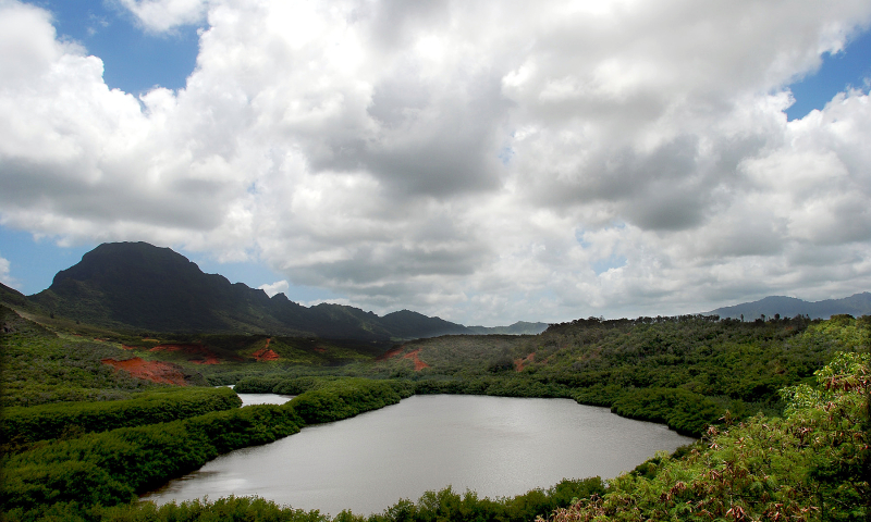 Hills and Valley Kauai