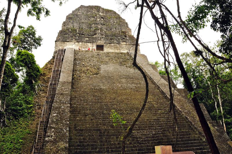 Pyramid at Tikal Guatemala