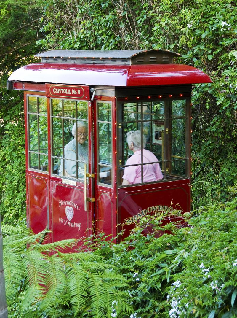Ladies on the tram