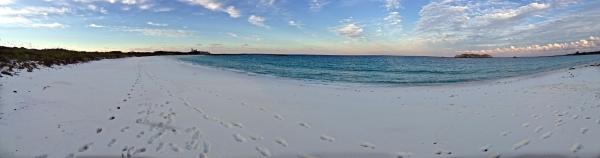 Compass Cay Bahamas