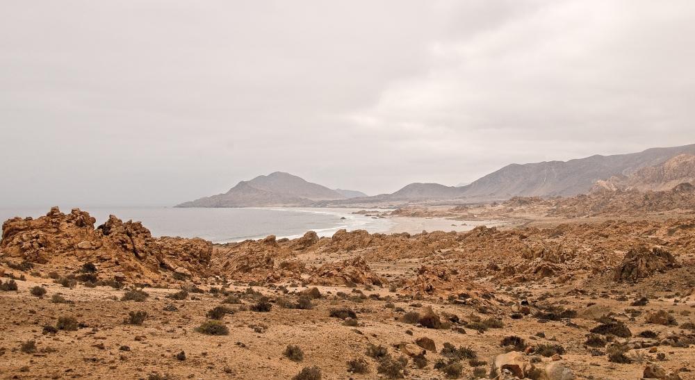 Desert and Beach Atacama Region
