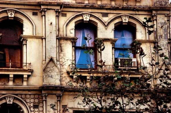 Windows. downtown Sydney