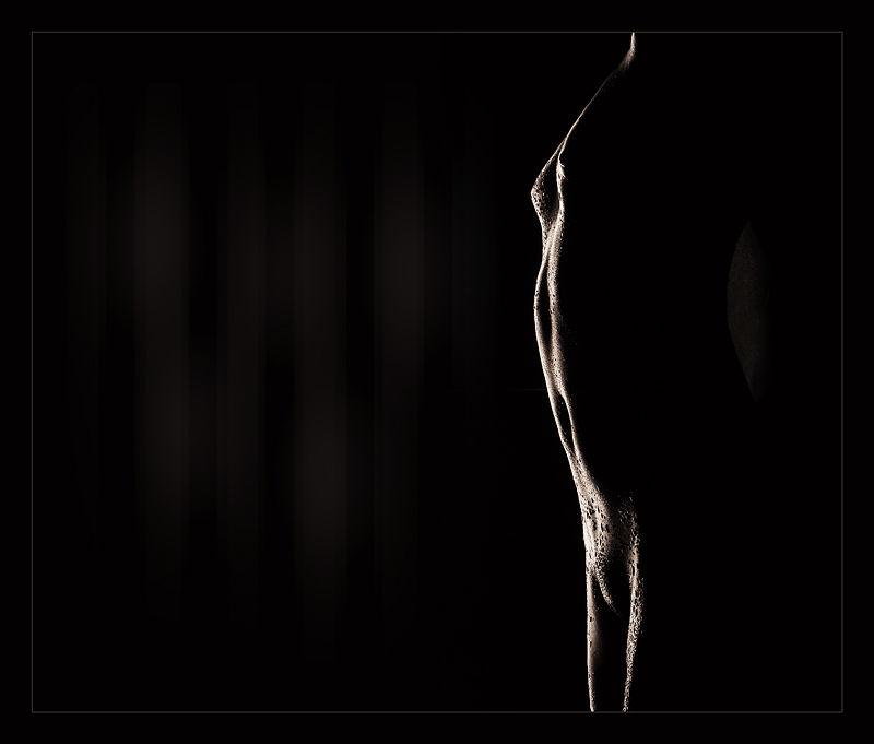 ~*~ shadows ~*~