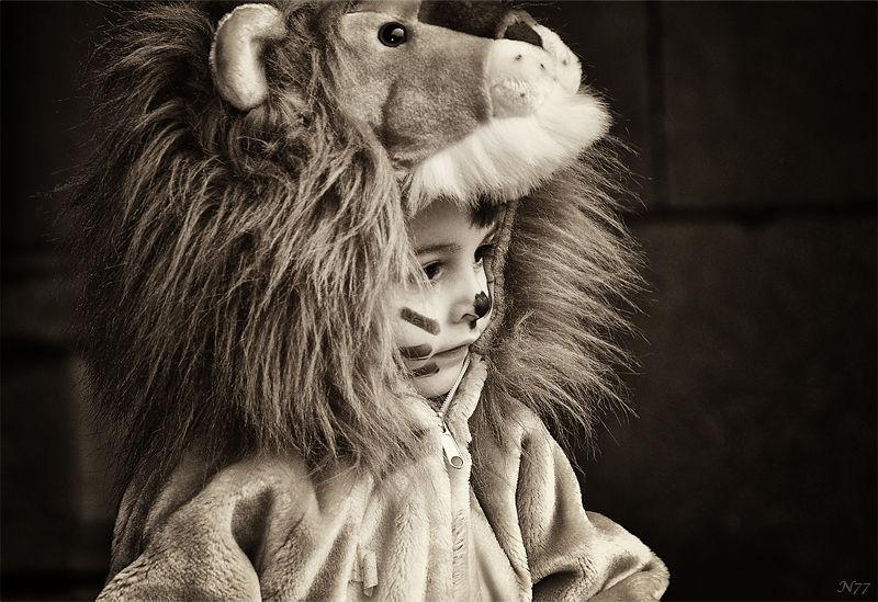 ~*~ Lion King ~*~
