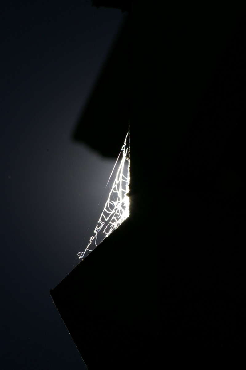 Hope -- Light in Darkness