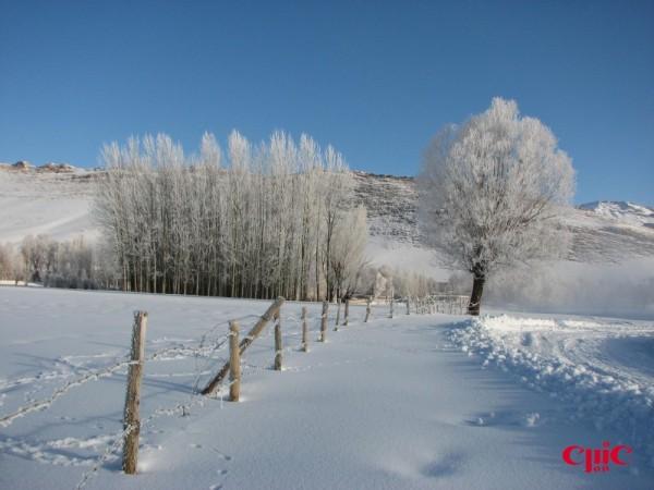 صبح برفي 7
