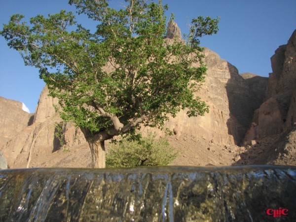 چشمه تامهر  2