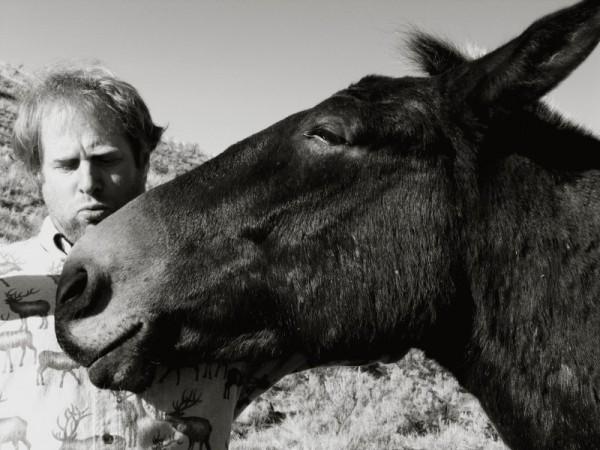 The Mule's Scratch